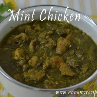 Mint Chicken Gravy | Mint Chicken Curry