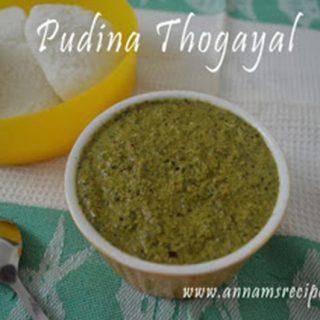 Chettinad Pudina Chutney | Pudina Thogayal Recipe
