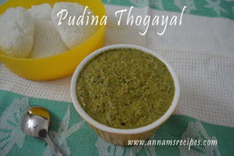 Chettinad Pudina Chutney Pudina Thogayal Recipe