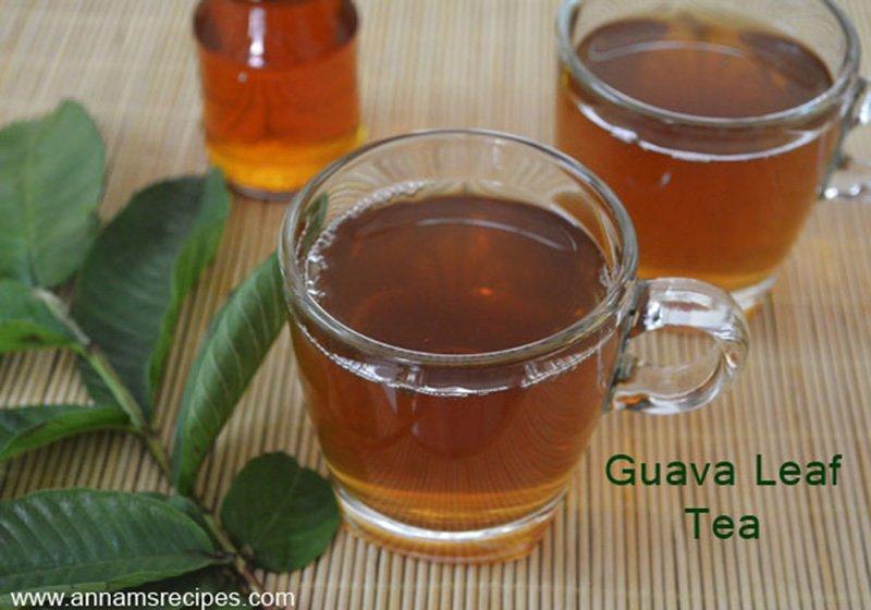 Guava Leaf Tea Guava Leaf Tea Preparation
